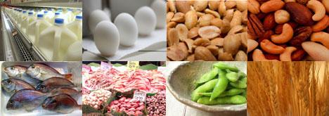 Best Food Allergist Nyc
