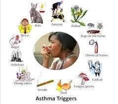 Asthma Doctor NYC 2