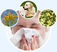 Best Allergy Doctor NYC3